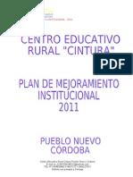 Plan de Mejoramiento 2010-11 Cintu