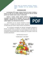 Informe Sobre Los Principales Nutrientes