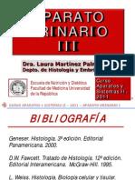 Histologia Renal 3 2011