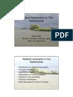 Wetland Restoration in The Netherlands