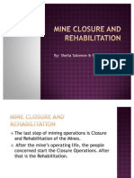 5. Mine Closure and Rehabilitation