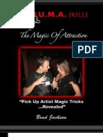Magic of Attraction eBook