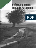 (2004) La estructuración del espacio a través del tiempo en Cerro de los Indios 1 (Lago Posadas, Santa Cruz) - María José Figuerero Torres