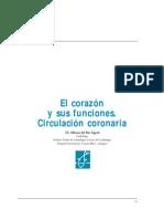 Ayuda Corazon y Sus Funciones (Arteria)