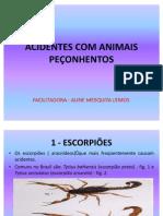 AULA 15-ACIDENTES COM ANIMAIS PEÇONHENTOS