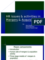 HR Issues & Activities in Mergers & Acquisition