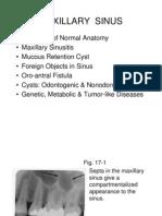 Chapter 17 Maxillary Sinus.slides