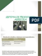 Sistema de Produccion Agricola de Chuki
