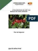 Plan de Negocios Micro Agua Azul Bellezas (cafe organico)