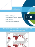 Malaria in Maternal Health (Dr. William Brieger)