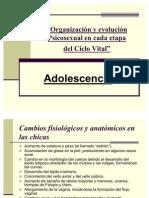 Pp Adolescencia Juventud Adultez y Vejez