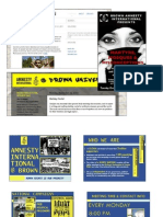 Amnesty Portfolio