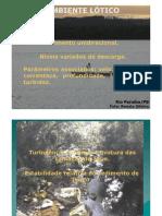 Ambiente lótico2010 (1)
