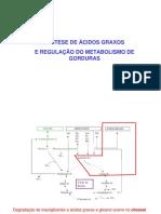 FISIO_13_-_Biossintese_de_acidos_graxos_1