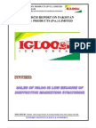 Sales of Igloo is Low Because of Ineffective Marketing Strategies