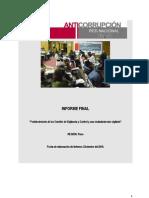 Informe Final - Puno