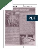 18.06.2011 - Riconosciuto Il Marchio Igp Alla Carota Novella Di Ispica