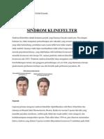 Sindrom Klinefelter Adalah Kelainan Genetik Yang Biasanya Banyak Terjadi Pria