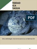 Biodiversidad zoologica Nicaragua