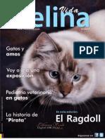 Revista Vida Felina - 1 Edic