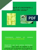 Clase 2 Fitorreguladores AUXINAS_ppt [Modo de ad