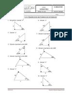 Guia Nº 3 Geoemtria Triangulos Rectangulos Notables