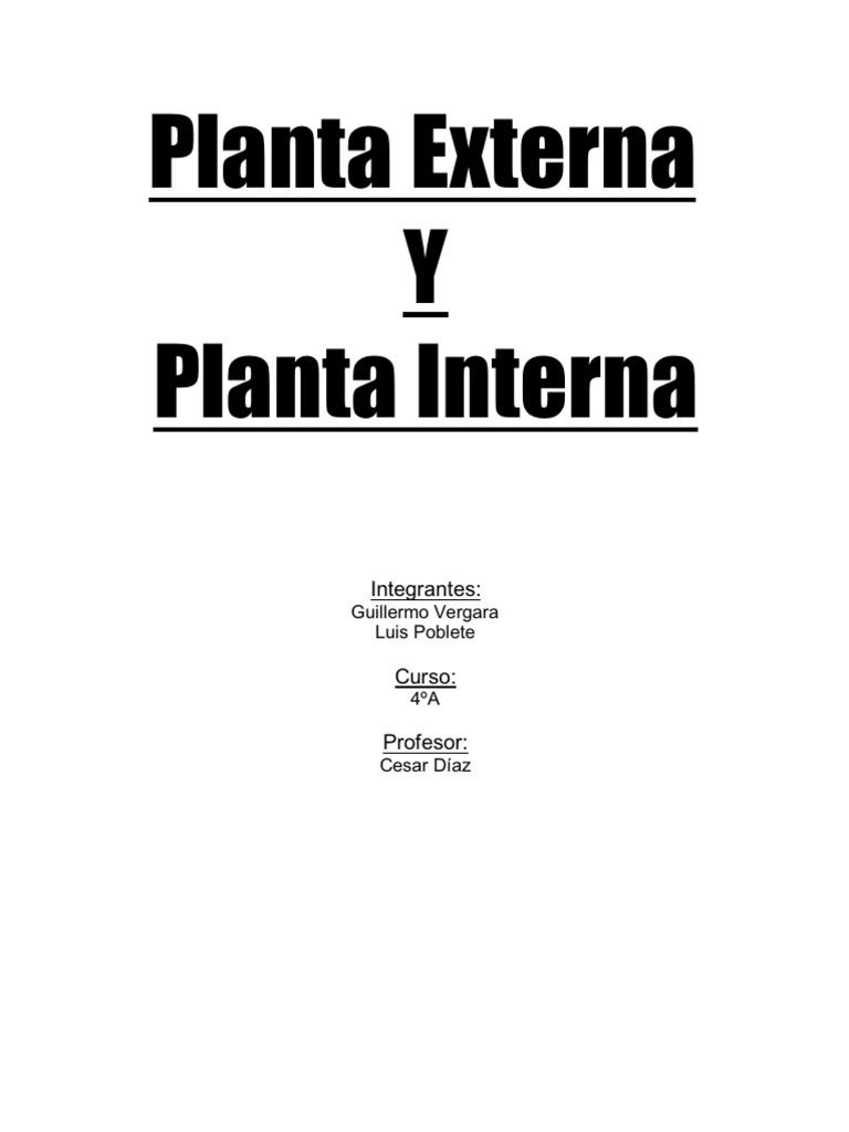 Planta externa interna y canalizacion for Pianta esterna