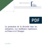 Rapport Diversite Deloitte20101