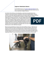 Urgence Veterinaires Geneve
