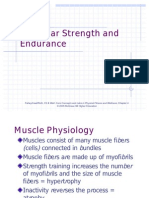 Muscle Strength Training
