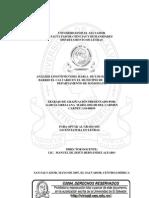 Análisis lingüístico del habla de los habitantes del Barrio El Calvario en el municipio de Nahuizalco, departamento de Sonsonate