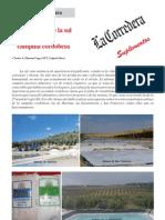 Los paisajes de la sal en la campiña cordobesa