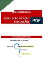 Biotecnologia - Farmacia - Regulacao Da Acao Genica - Traducao