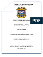 Ensayo Final-diversidad en La Ingenieria Civil