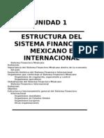Unidad 1 Sistema Financiero Mexicano