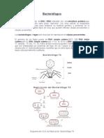 Bacteriofagos