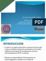 Unc 1 Anatomia, Histologia Embriologia e Inmunologia De