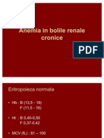 Anemia in Bolile Renale Cronice