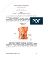 Anatomi Klinis Kelenjar Thyroid
