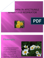 Fitoterapia in Afectiunile Slides