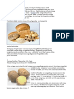 Sumber Karbohidrat,Vit,Mnrl Lmk