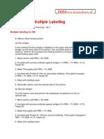 Multiple antigen immunogold labelling