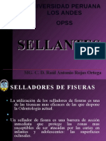 TEMA DE OPSS