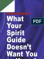 Spirit Guides