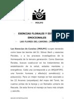 Esencias Florales y Edos2