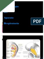 T Embriología Aparato respiratorio