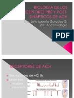 BIOLOGÍA DE LOS RECEPTORES PRE Y POST-SINÁPTICOS DE