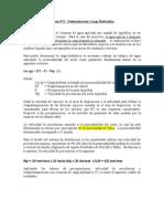 Anexo N 5 Deteminacion Carga Hidraulica
