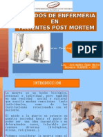 Cuidados Post Mortem_ACanoM