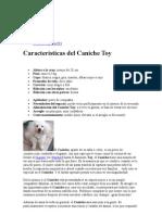 Caniche Toy